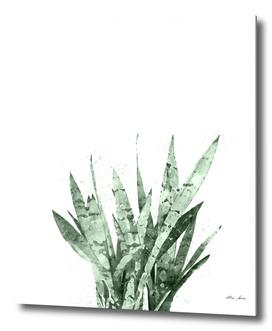 Cactus Watercolor Art