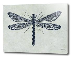 Dragonfly digital illustration