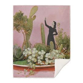 The Wonders of Cactus Island