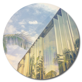 Beverly Hills - Palm Reflections