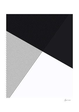 Geometric Minimalist
