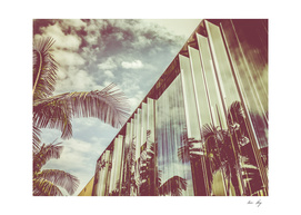 Beverly Hills - Palm Reflections III