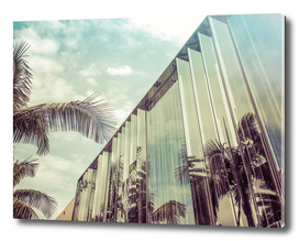 Beverly Hills - Palm Reflections IV