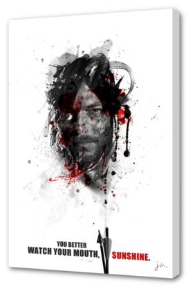 Shadow collection : Daryl