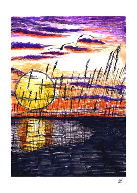 Marsh Cove At Sunset