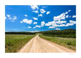 Mountain Road Summer