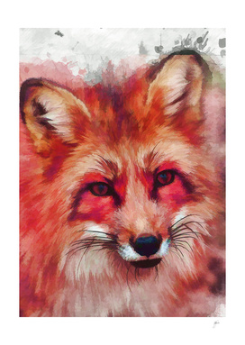 animal fox art