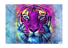 tiger purple spirit