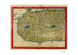 Vintage Map of West Africa (1561)