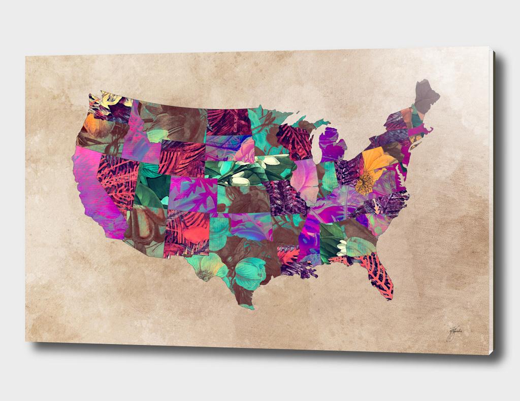 USA map 3