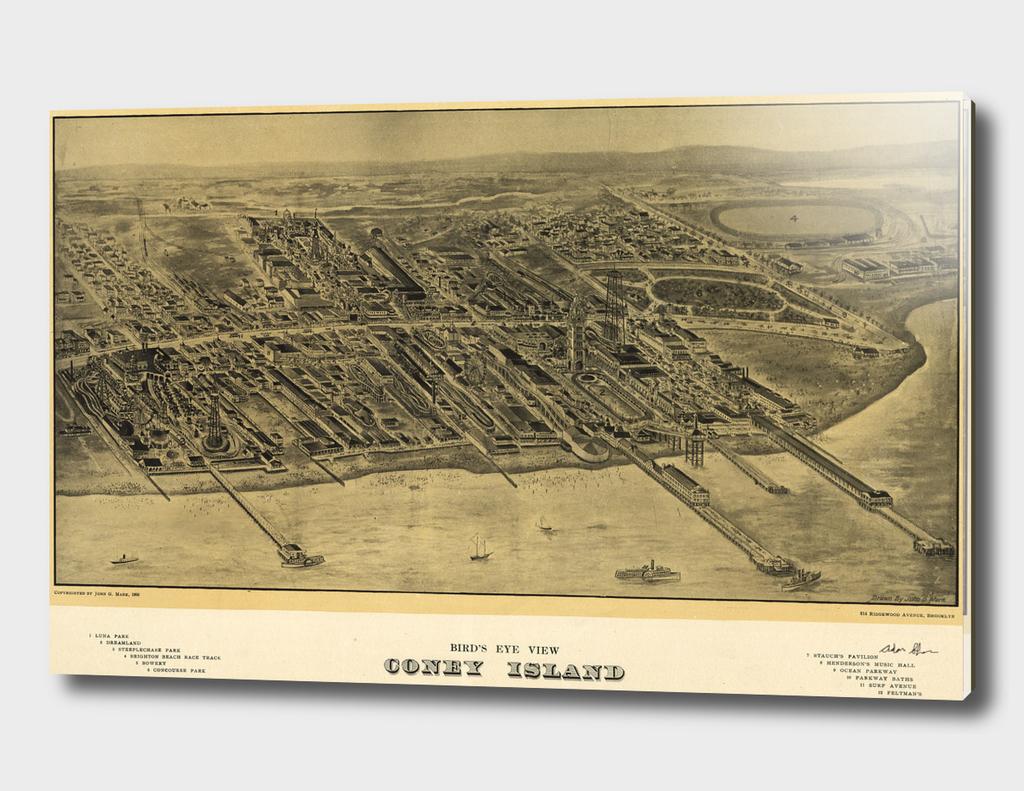 Vintage Map of Coney Island NY (1906)