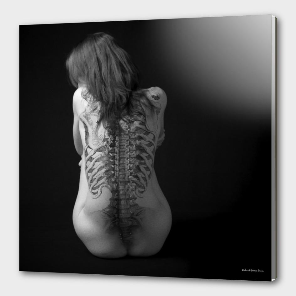 Skin & Bone 2
