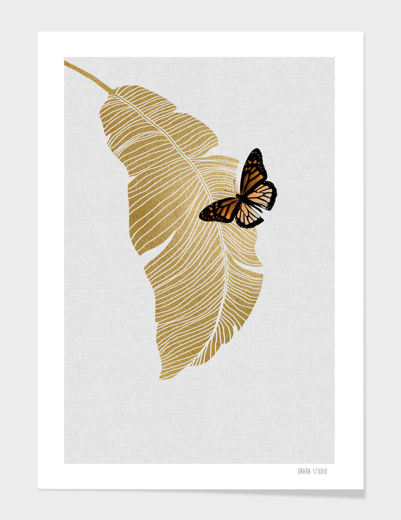 Butterfly & Palm