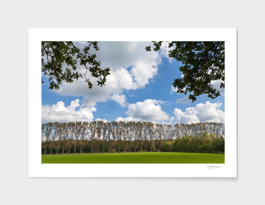 Beautiful landscape at Dommeldal