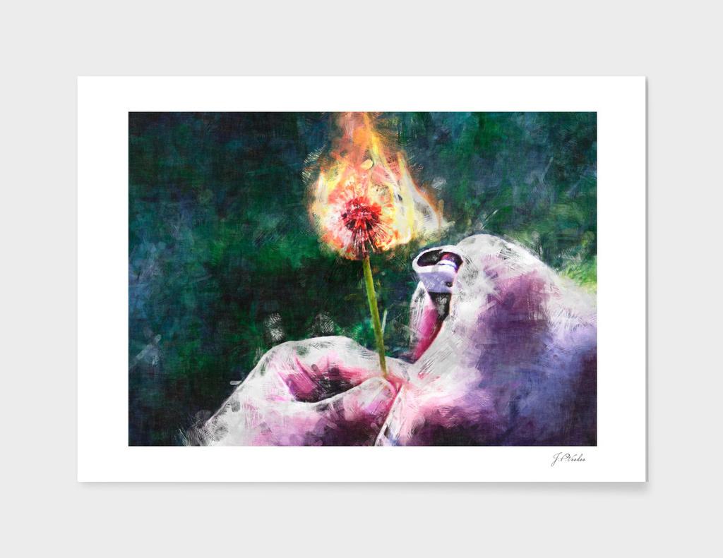 Burning flower