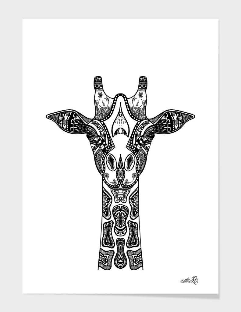 Giraffe Illustration/Drawing