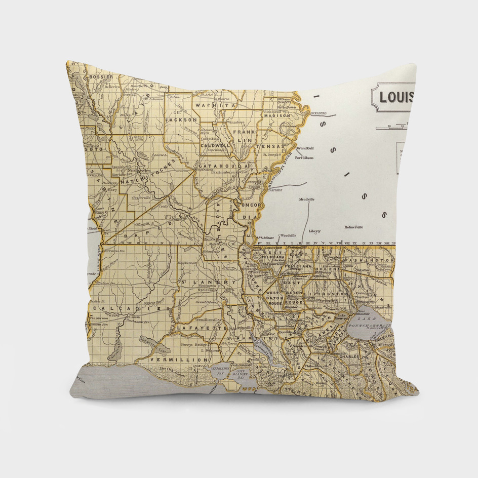 Vintage Map of Louisiana (1845)