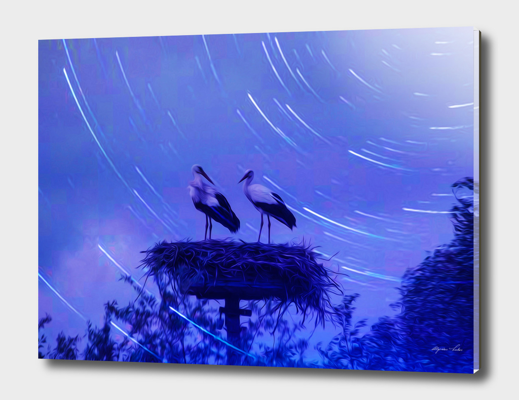 s, r, 003  11d 10 Two storks in blue
