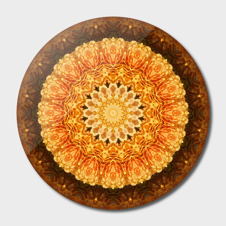 Gold Mum Fall Kaleidoscope