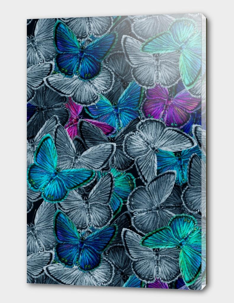 Dark Butterflies