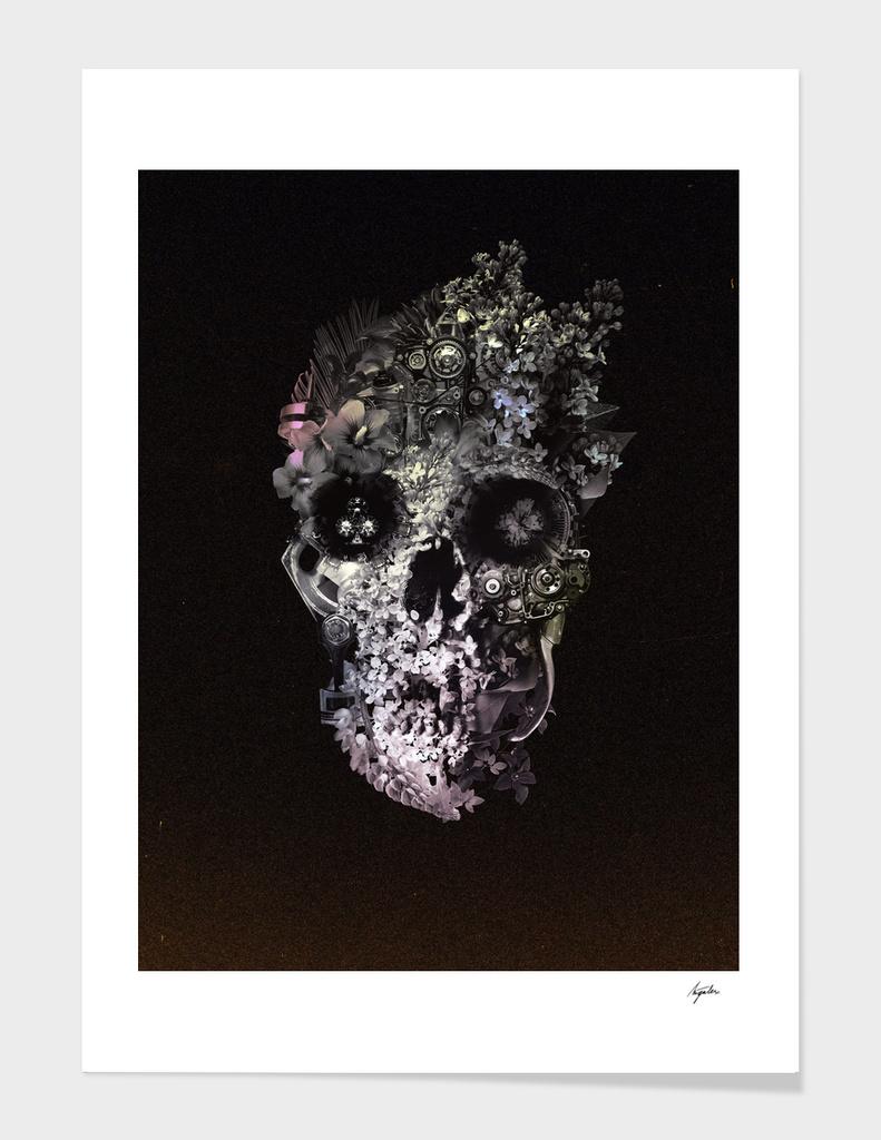 Metamorphosis Skull