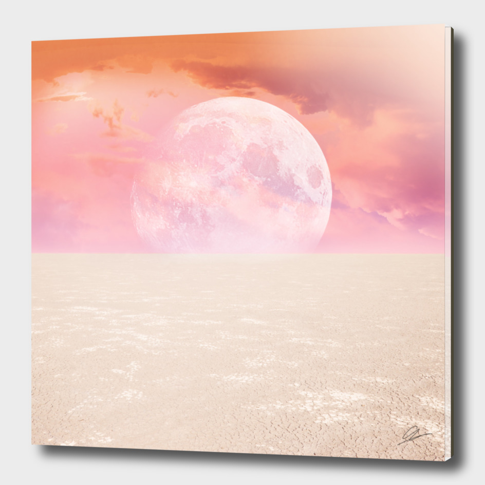 Desert Moon in Full Pink
