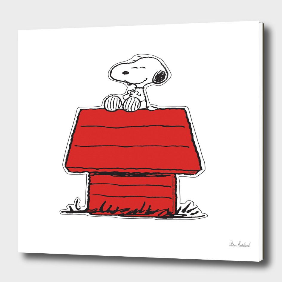 Snoopy Cartoons House