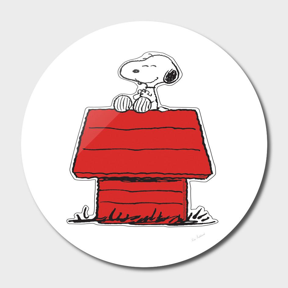 Snoopy Cartoons House
