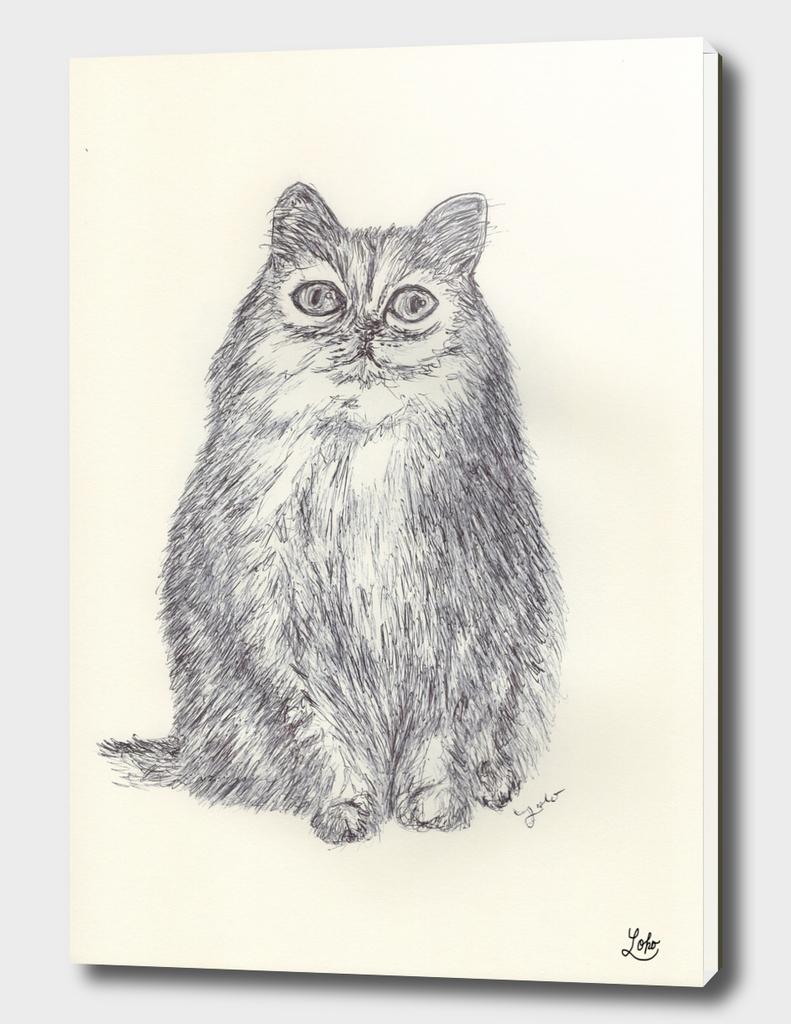 BALLPEN CAT 5