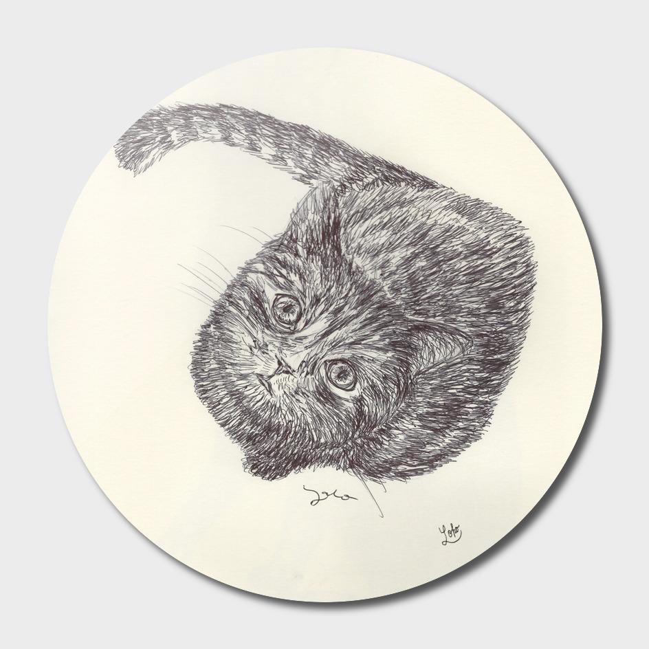 BALLPEN CAT 8