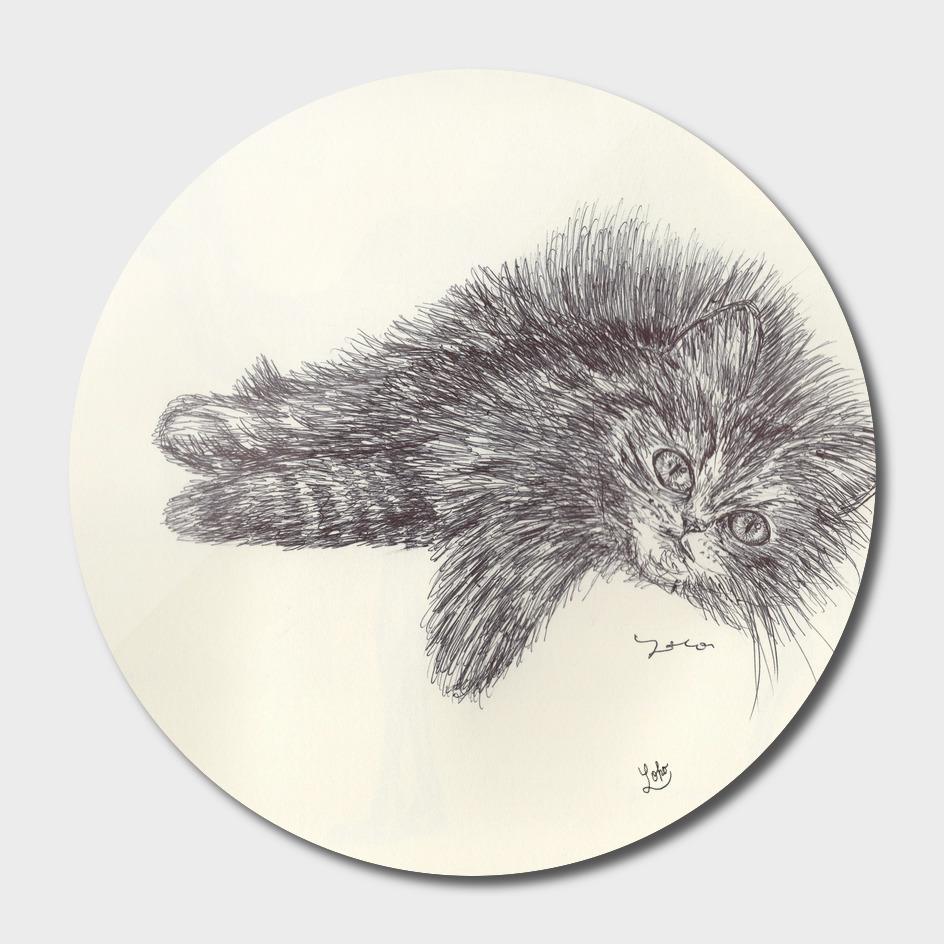 BALLPEN CAT 6
