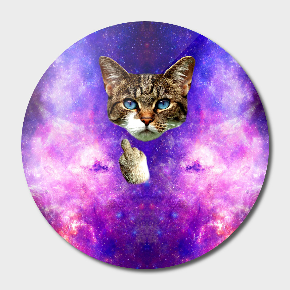 cat Fuck you finger galaxy