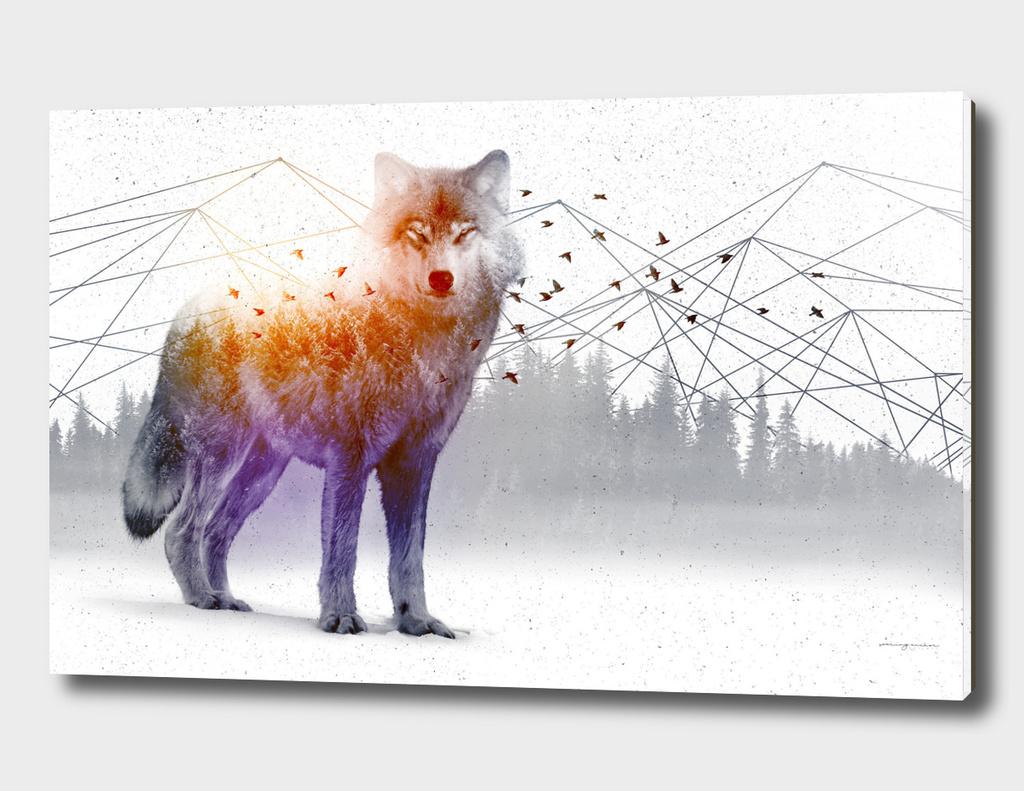 A WildernessWithin | Wolf