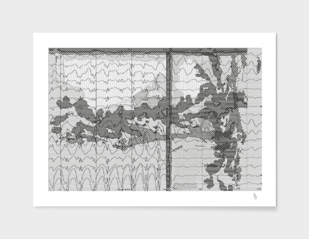 Nelson Katonasaï-Fuji diagramme n°36