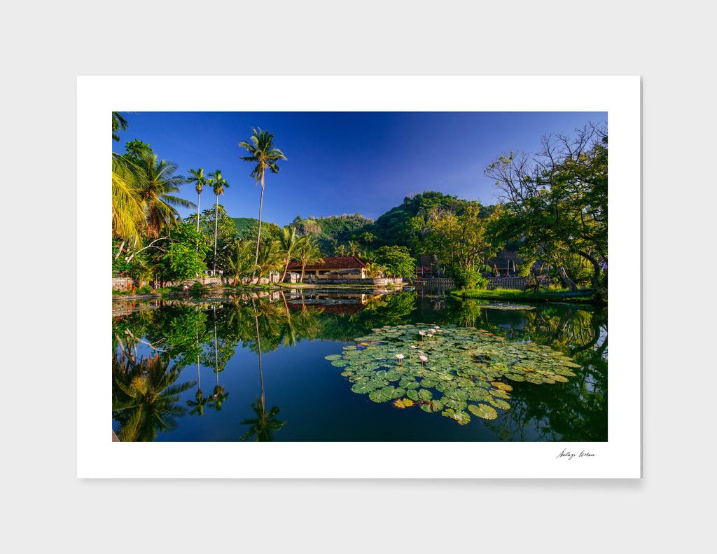 Tropical lake