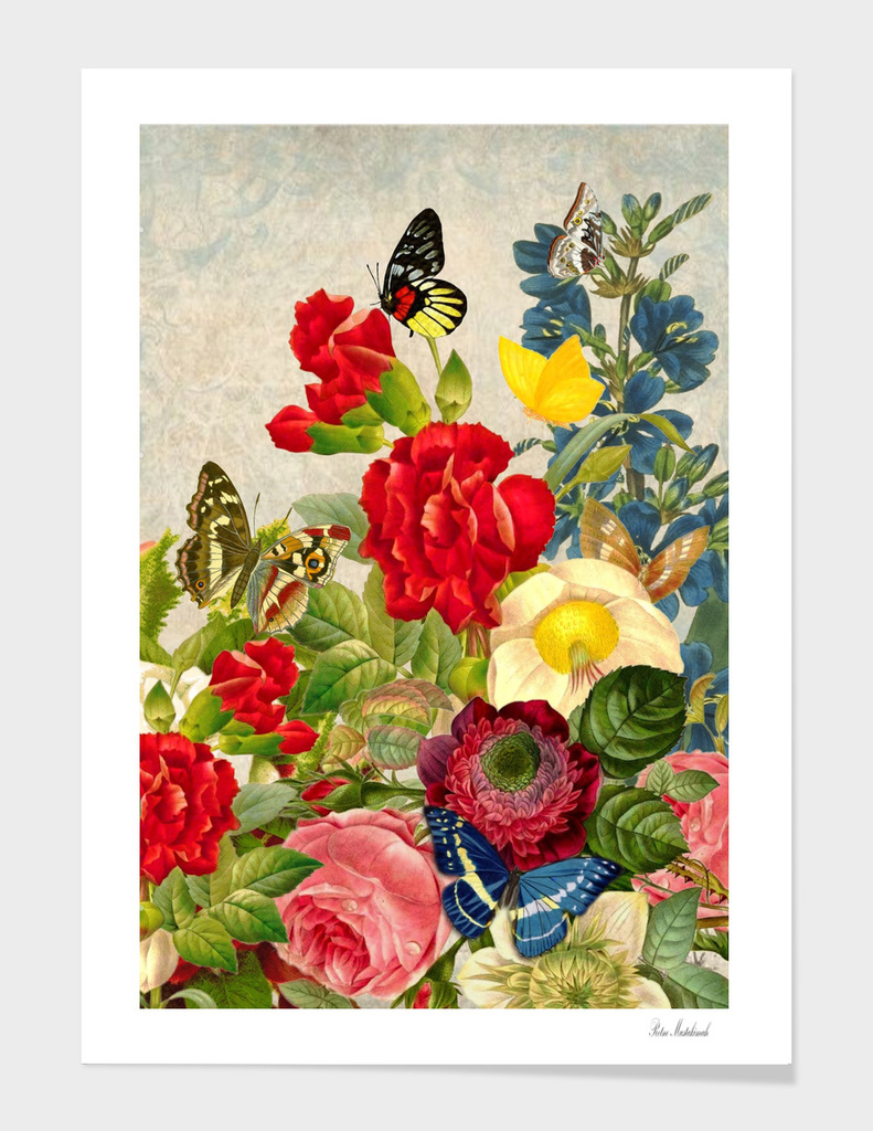 vintage flower butterfly art rose