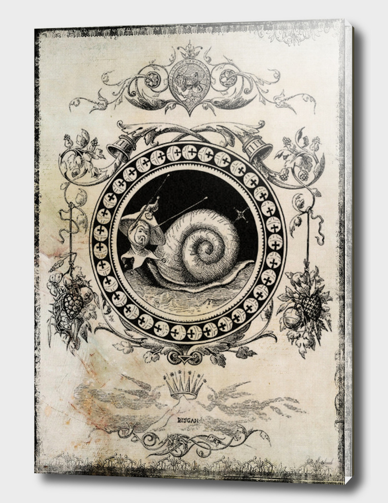 snail vintage collage art framed