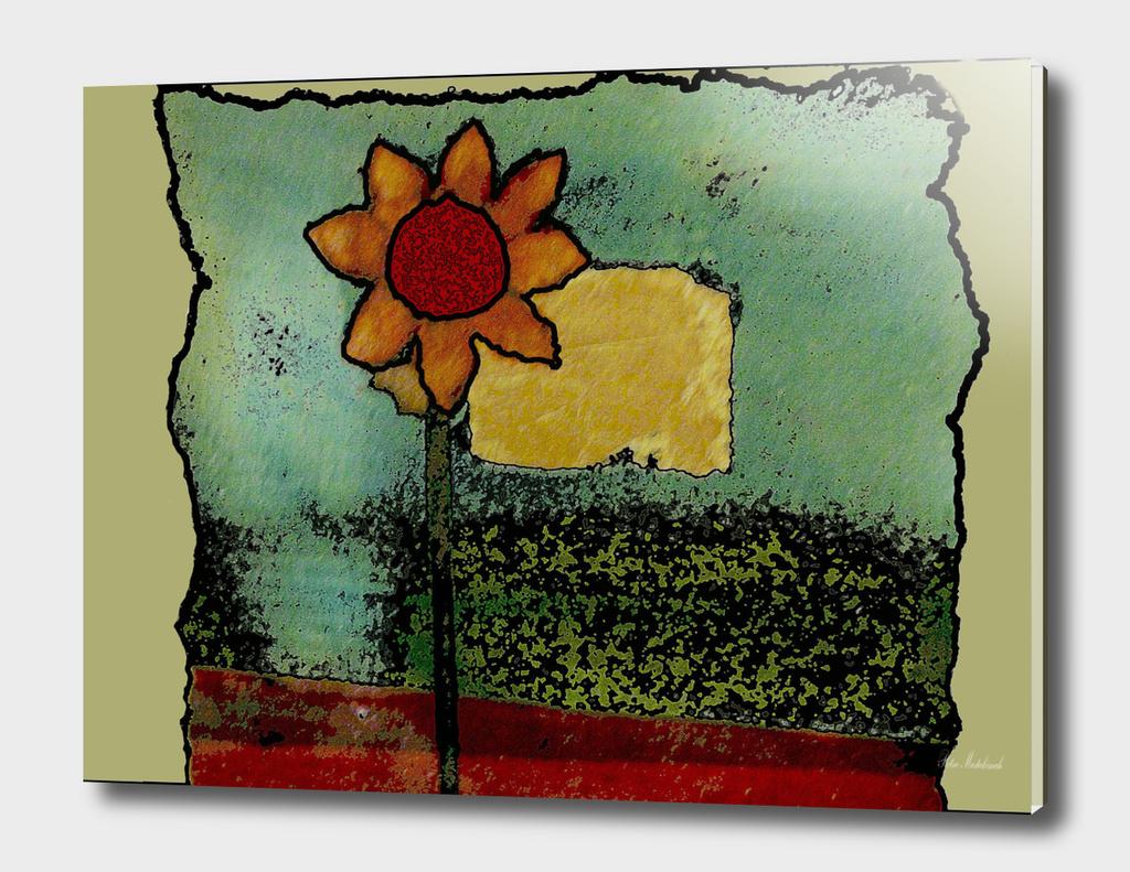 flower flowers naif box nature