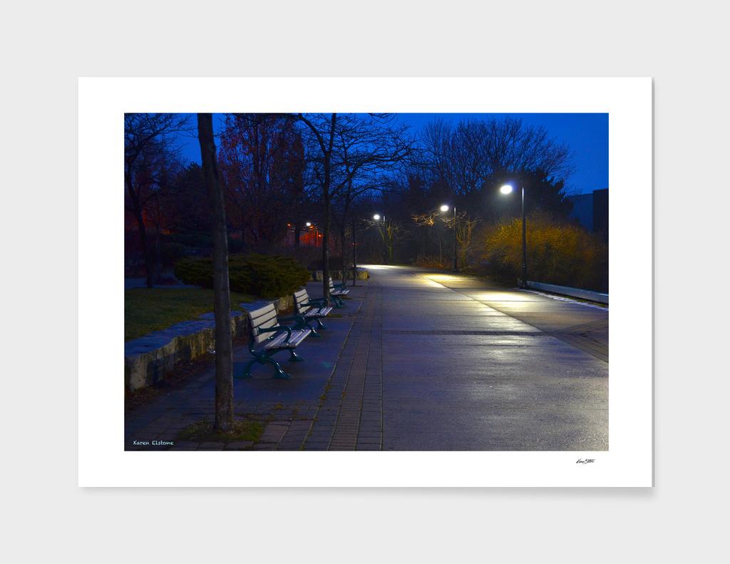 Twilight Path