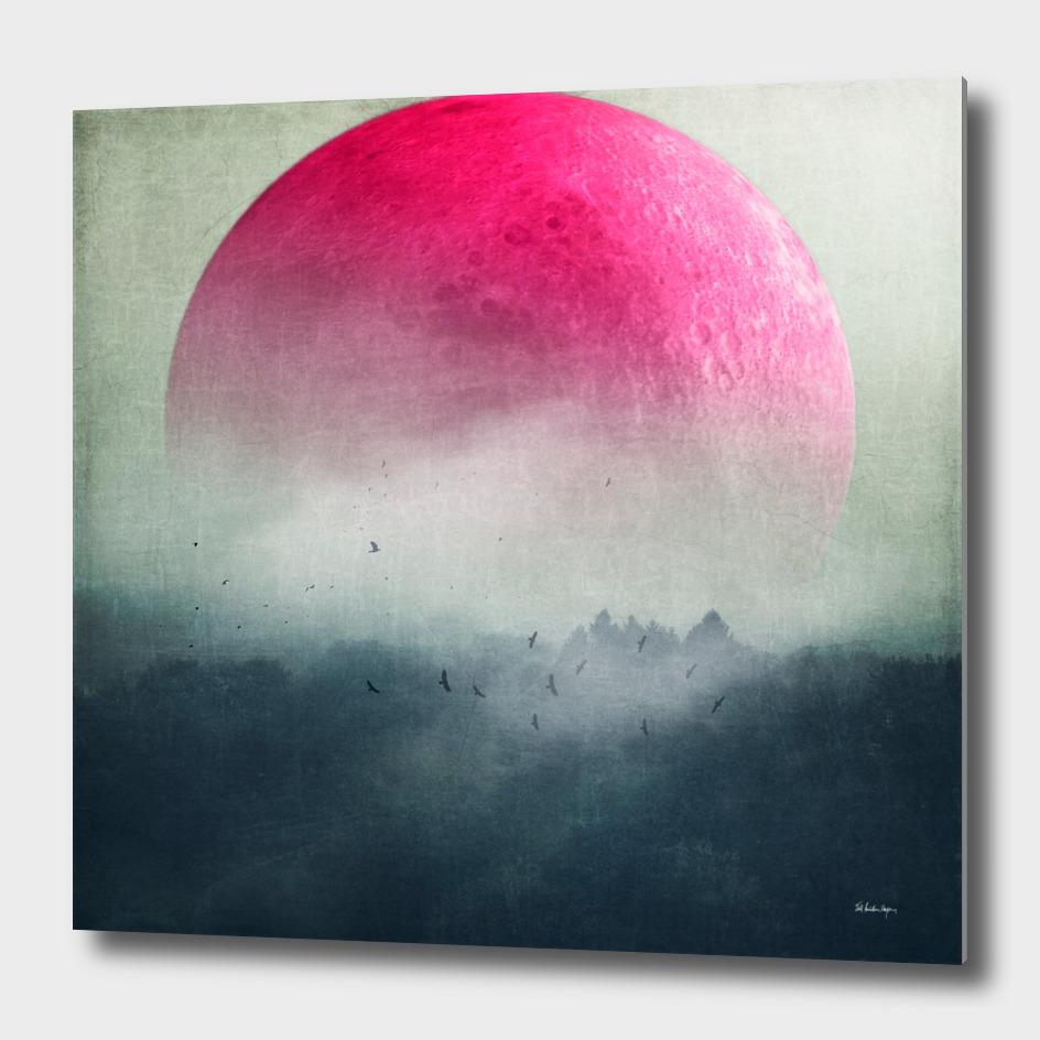 pink moon over misty woodlands