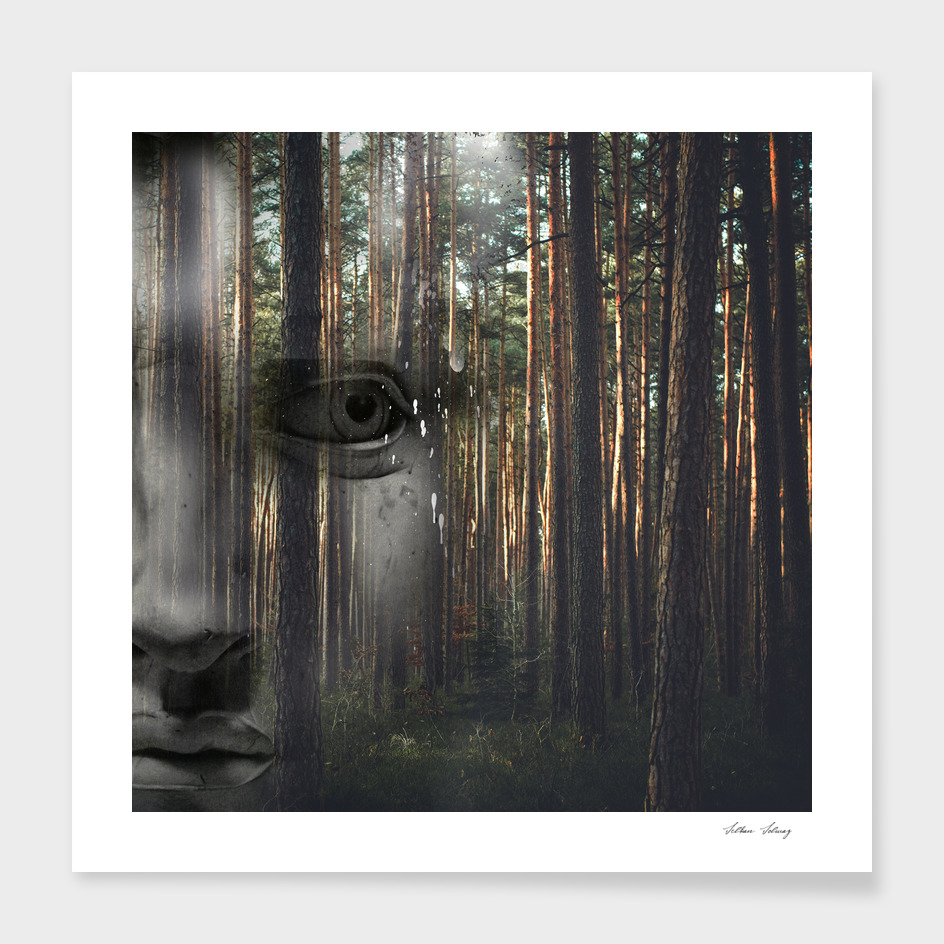 David with forest