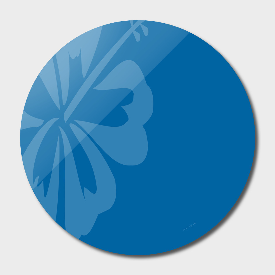 hibiscus sakura classic blue