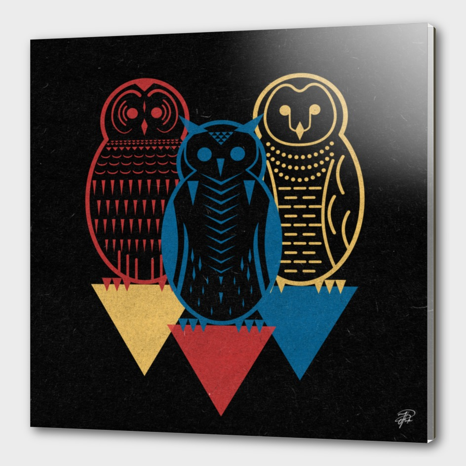 Three Owls at Night