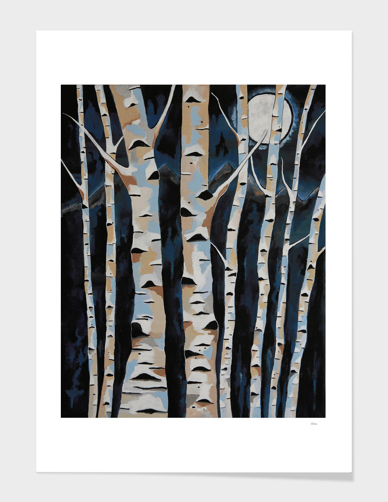 Moonlight And The Birch