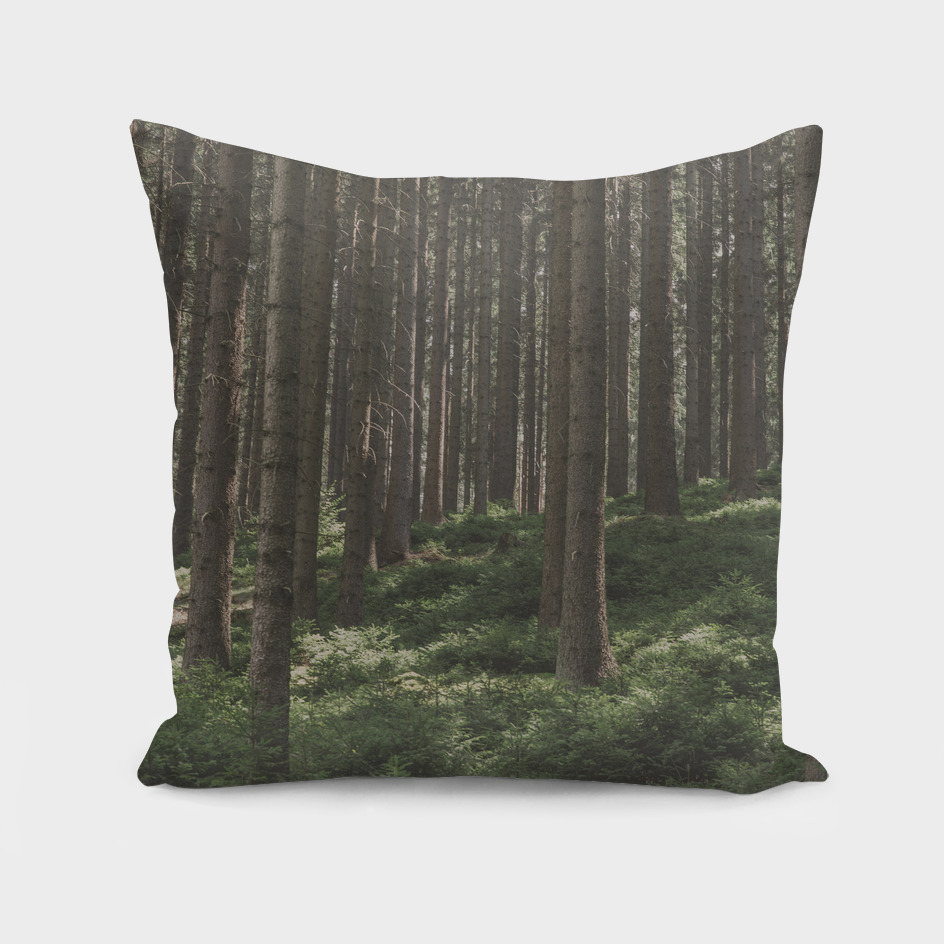 Forest 07