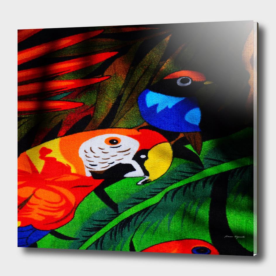 papgei red bird animal world towel parrots
