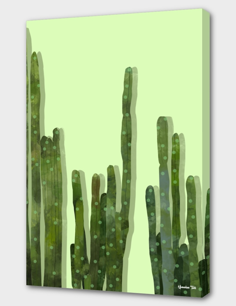 Point Cactus