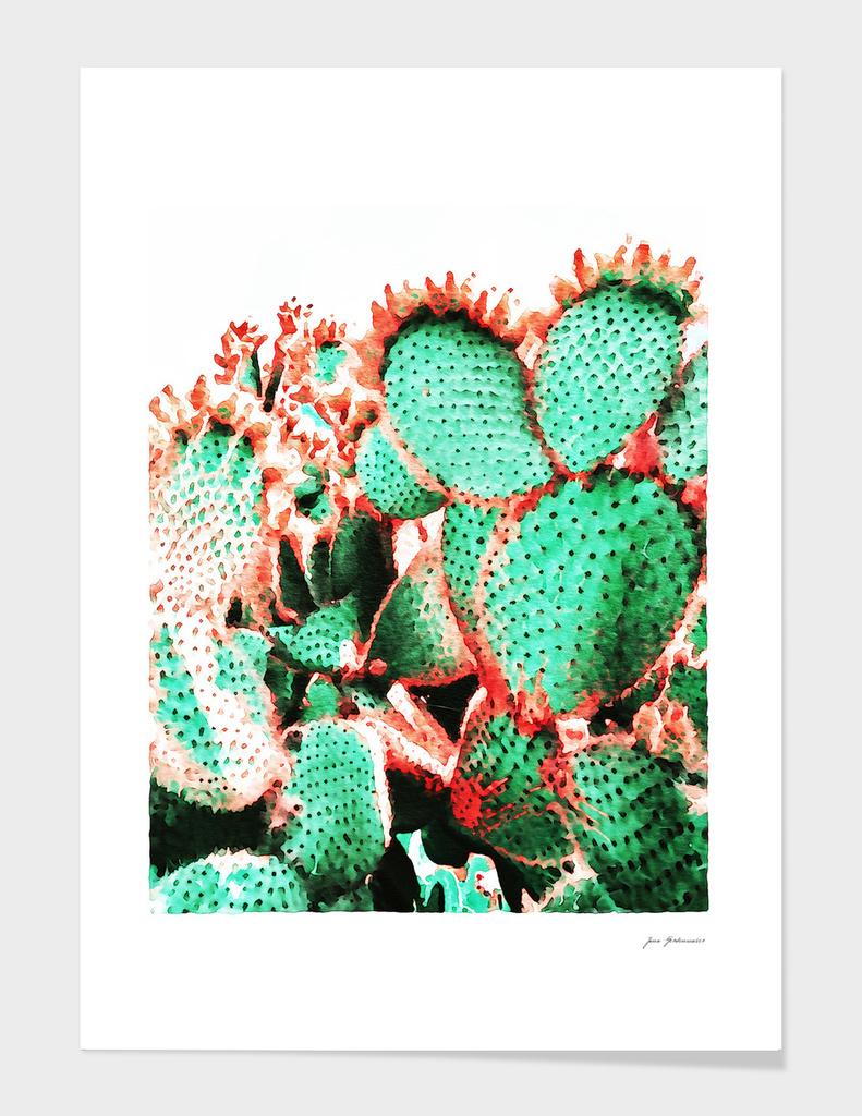 Cactus - watercolor II