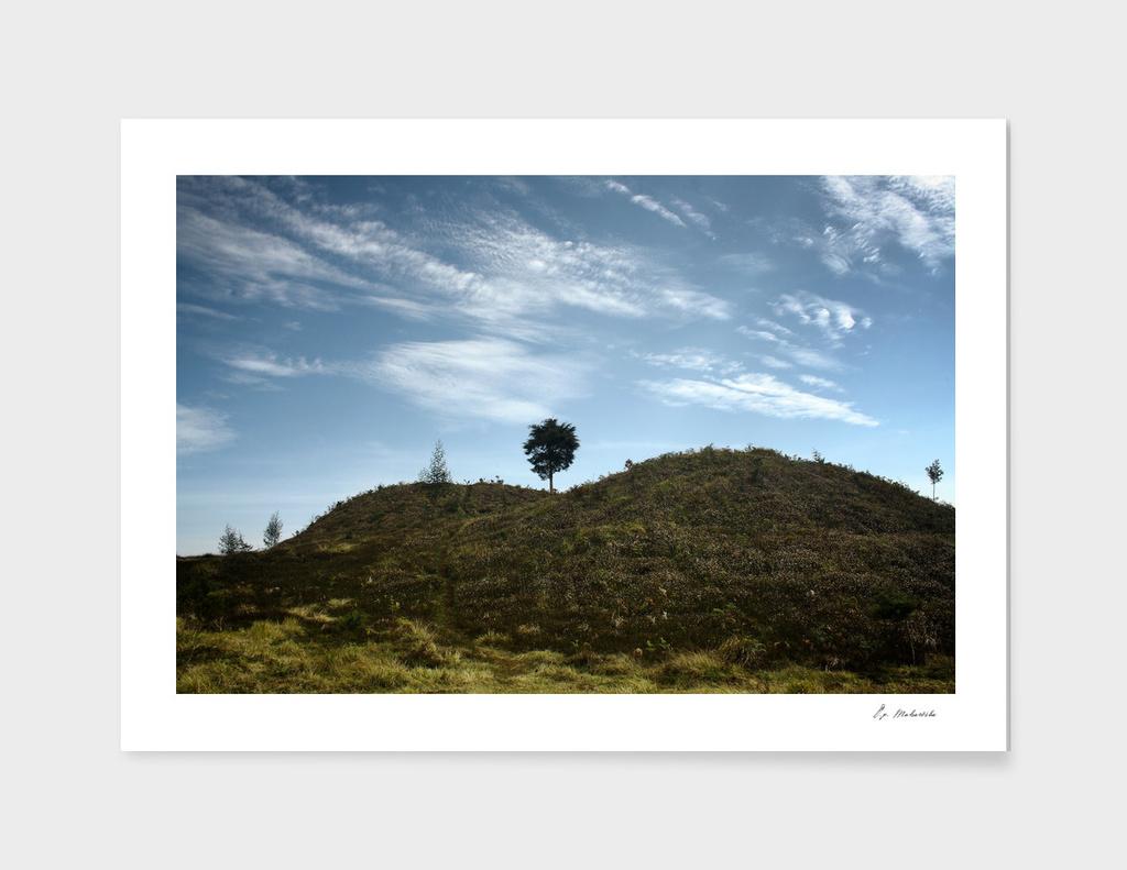 Lonte Sore Hills