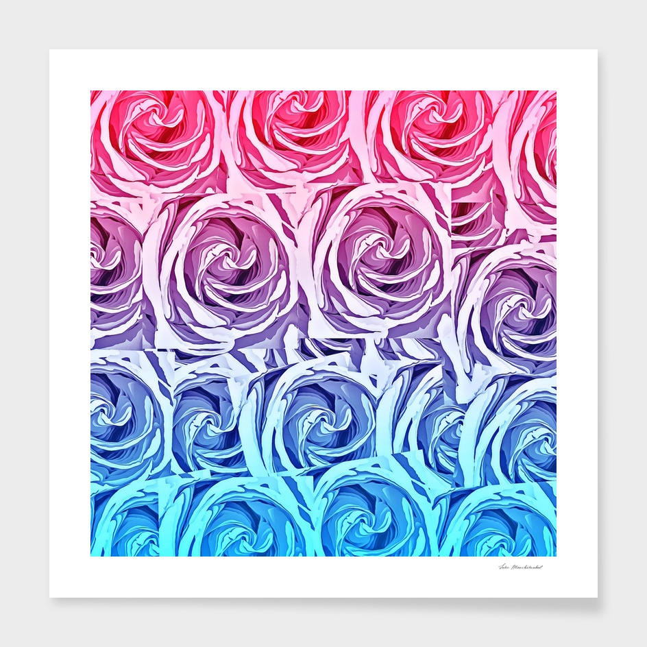 blossom pink and blue rose texture pattern abstract